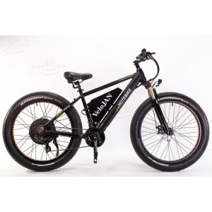 Electric Bicycles (7)
