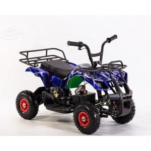 Electric ATVs (2)